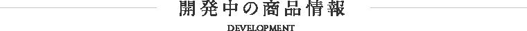 開発中の商品情報 DEVELOPMENT