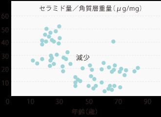 セラミド量/角質層重量